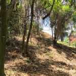 West Bay Land for Sale